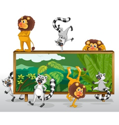 Lion and squirrels with board vector