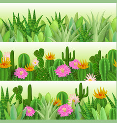 cactus and succulent vector image