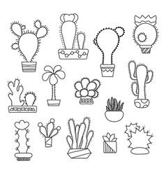 hand-drawn cactus on white vector image vector image