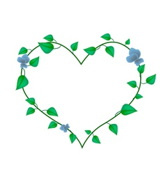 Vine Leaves with Blossoms in A Beautiful Heart vector image vector image
