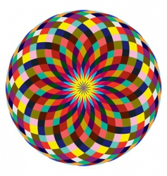 beautiful rosette vector image
