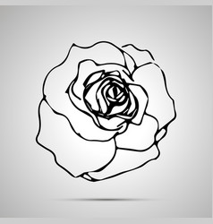 detailed rosebud simple black icon vector image