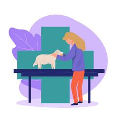 dog at clinics on chekup at veterinarian doc vector image