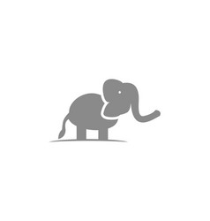 elephant logo template design vector image
