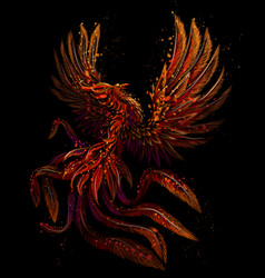 Phoenix color graphic digital drawing vector
