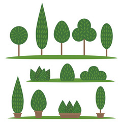 garden and park set cartoon trees and bushes vector image vector image