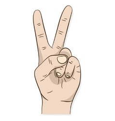 Hand peace or victory sign vector image