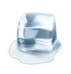 Ice cube isolated on white background vector image vector image