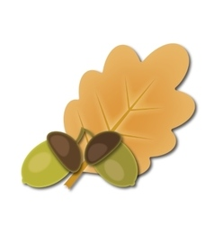 Two acorns and oak leaf vector image