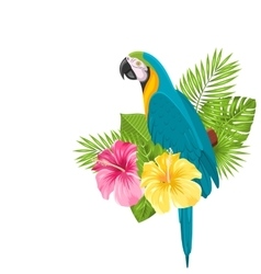 Parrot Ara Colorful Exotic Flowers Blossom and vector image vector image