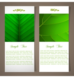Two bio banners vector image vector image