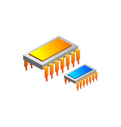chips ic electronic isolated on vector image