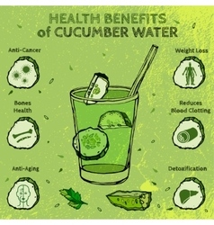 Cucumber Benefits Image vector