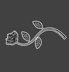 decorative rose with long stem flower silhouette vector image