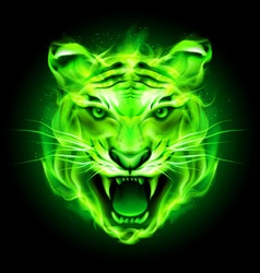 Fair tiger Green 01 vector
