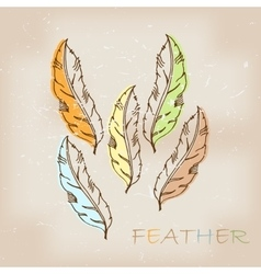Vintage hand drawn native tribal feather vector image
