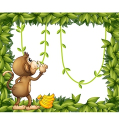 A monkey with banana and the green frame vector image vector image