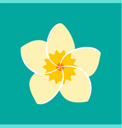 frangipani flower icon vector image