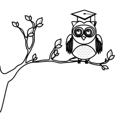 Owl with hat graduation vector