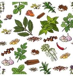 Seamless pattern of hand drawn spices and herbs vector image