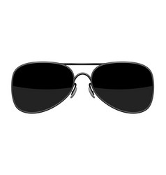 stylish sunglasses vector image