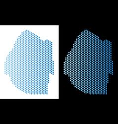 Swaziland map hexagonal mosaic vector