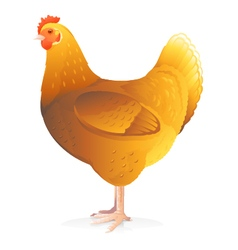 One Brown Hen vector image vector image