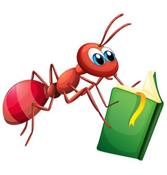 Ant reading book on white background vector