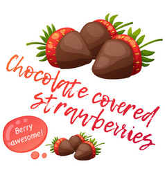 Chocolate covered strawberries icon isolated on vector