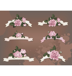 collection a different ribbon roses vector image