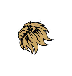 gold angry lion head logo sign flat design vector image