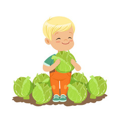 Happy blonde little boy standing with cabbage in vector