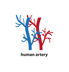 Icon human blood arteries simple vector