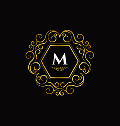 initial letter m luxury logo sign symbol icon vector image