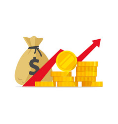 Profit money or budget flat vector