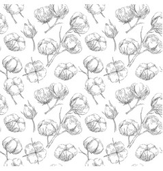 seamless cotton pattern vector image