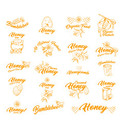 Sticker or labels with bees for honey container vector
