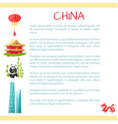 china card with text information and elements vector image