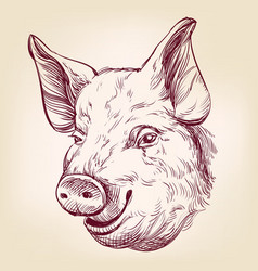 pig hand drawn llustration realistic sketch vector image vector image
