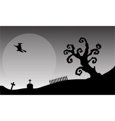 Witch flying halloween backgrounds vector image vector image