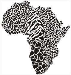 Black of continent as a animal skin vector image vector image
