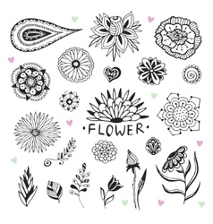 flowers collection in zentangle style Hand vector image vector image
