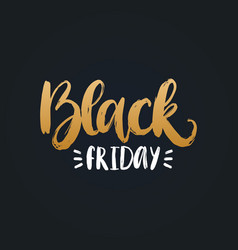 black friday handwritten phrase vector image