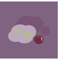 Flat with shadow Icon fried eggs and tomato vector