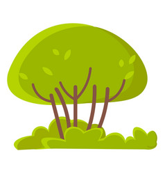 green trees or bushes grass isolated spring vector image