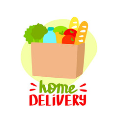 home delivery flat vector image