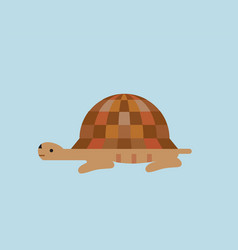 turtle flat style icon vector image vector image