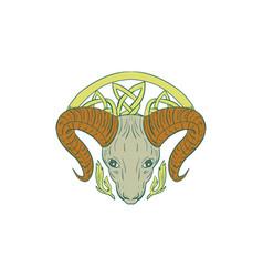 ram head celtic knot vector image vector image