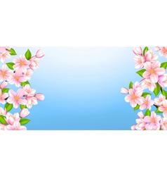 Beautiful branches of Sakura vector image