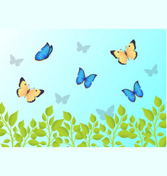 butterflies that fly over green grass in blue sky vector image